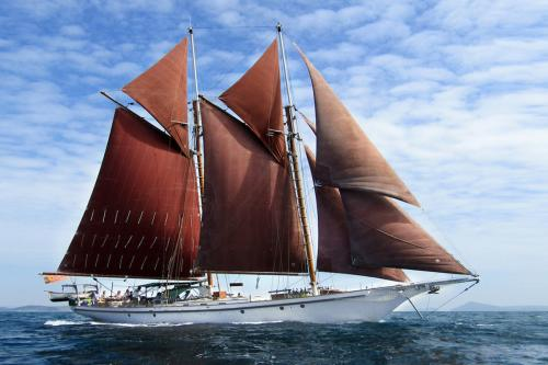 DALLINGHOO - Luxury Sailing Yacht for Charter | C&N