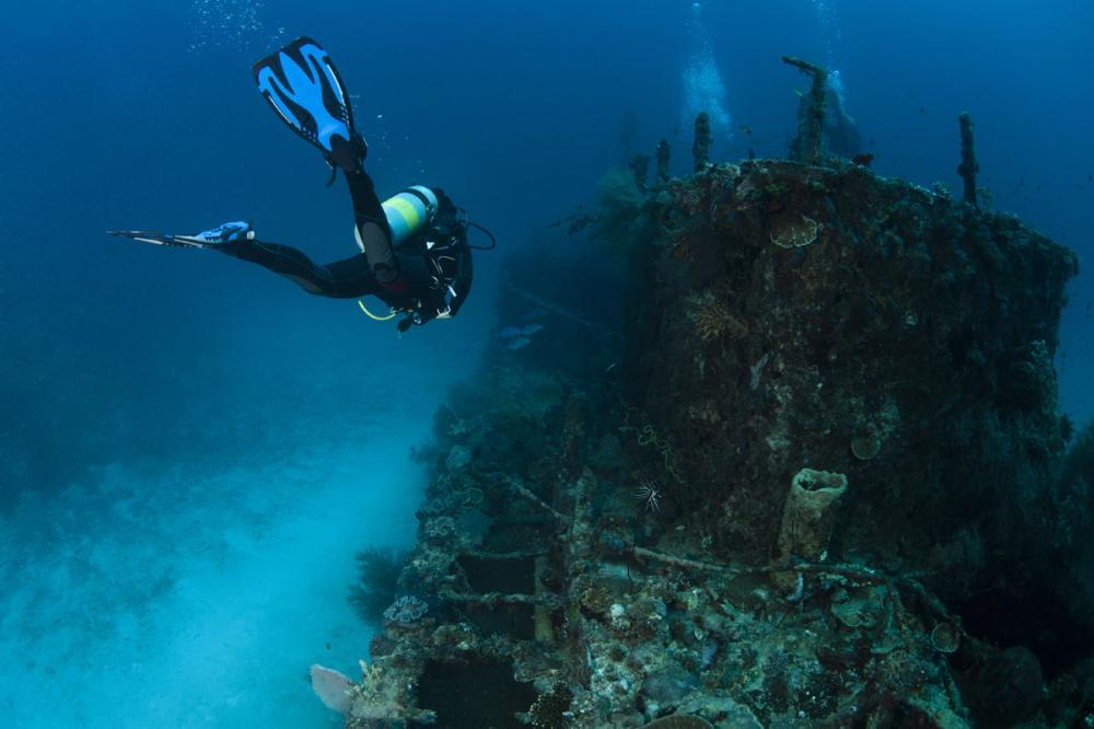 How Dive Gear and Technology Can Enhance the Dive Experience - Lifestyle - Img 5 | C&N
